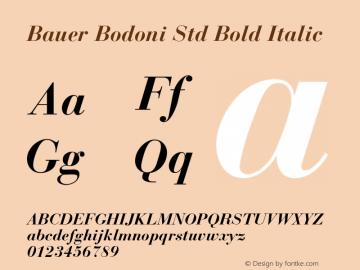 Bauer Bodoni Std Bold Italic Version 1.040;PS 001.002;Core 1.0.35;makeotf.lib1.5.4492图片样张