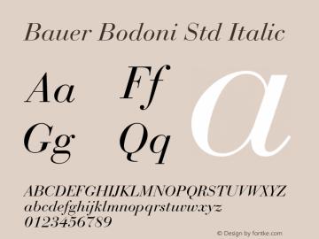 Bauer Bodoni Std Italic Version 2.030;PS 002.000;hotconv 1.0.51;makeotf.lib2.0.18671图片样张