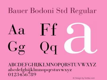 Bauer Bodoni Std Regular Version 2.030;PS 002.000;hotconv 1.0.51;makeotf.lib2.0.18671图片样张