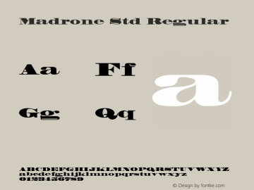 Madrone Std Regular Version 2.031;PS 002.000;hotconv 1.0.50;makeotf.lib2.0.16970图片样张