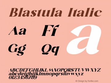 Blastula Italic Version 1.001图片样张