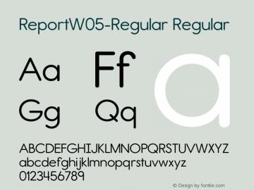 Report W05 Regular Version 2.10图片样张