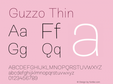 Guzzo Thin Version 1.00图片样张
