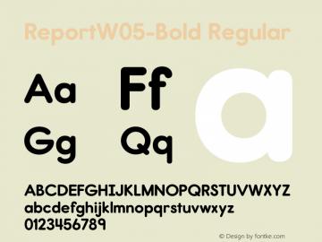 Report W05 Bold Version 2.10图片样张