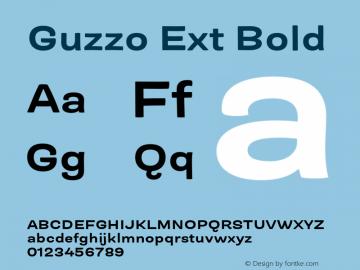 Guzzo Ext Bold Version 1.00图片样张