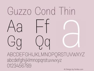 Guzzo Cond Thin Version 1.00图片样张