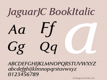 JaguarJC BookItalic Macromedia Fontographer 4.1 23/4/96图片样张
