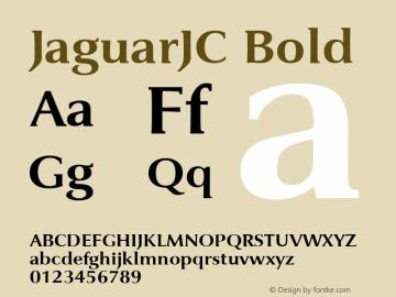 JaguarJC Bold Macromedia Fontographer 4.1 23/4/96图片样张
