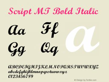 Script MT Bold Italic 001.000 Font Sample