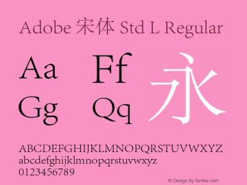 Adobe 宋体 Std L Regular Version 5.001;PS 5.001;hotconv 1.0.40;makeotf.lib2.0.13267图片样张