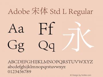 Adobe 宋体 Std L Regular Version 5.010;PS 5.002;hotconv 1.0.57;makeotf.lib2.0.21895图片样张
