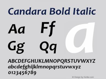 Candara Font,Candara Bold Italic Font,Candara-BoldItalic
