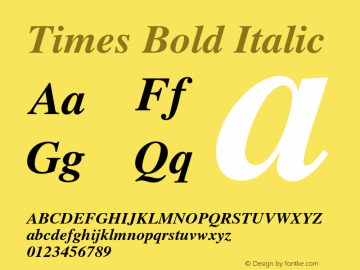 Times Bold Italic 001.009 Font Sample