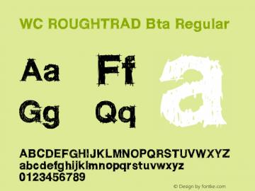 WC ROUGHTRAD Bta Regular Version 1.002图片样张