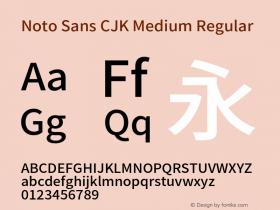 Noto Sans CJK Medium Regular Version 1.000;PS 1;hotconv 1.0.78;makeotf.lib2.5.61930 Font Sample