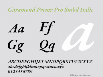 Garamond Premr Pro Smbd Font,GaramondPremrPro-SmbdIt Font,Garamond
