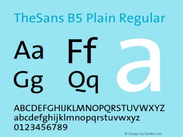 thesans b5 plain font