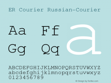 ER Courier Russian-Courier Version 1.000图片样张