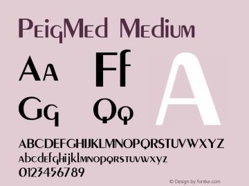 PeigMed Medium Version 001.000 Font Sample