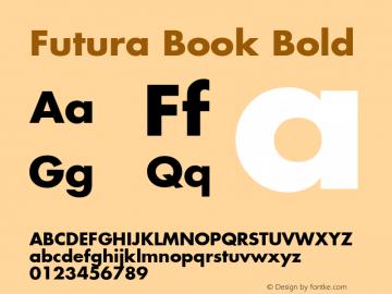 Futura Book Font,Futura Bold Font,Futura-Bold Font|Futura