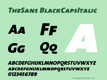 TheSans BlackCapsItalic Version 1.0 Font Sample