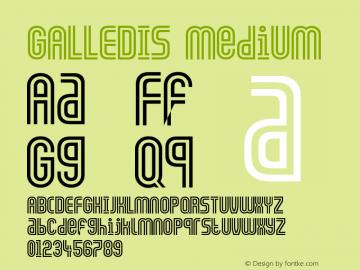 GALLEDIS Medium Version 001.001图片样张
