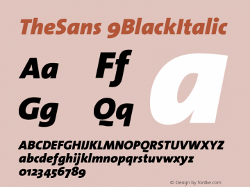 TheSans 9BlackItalic Version 1.0 Font Sample
