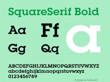 SquareSerif Bold Altsys Fontographer 3.5  6/28/93 Font Sample