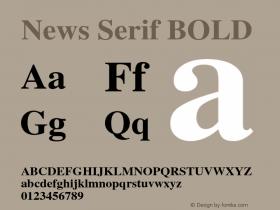 News Serif BOLD 001.000 Font Sample