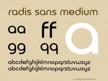 Radis Sans Medium Version 0.8b图片样张