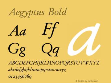 Aegyptus Bold Version 5.01图片样张