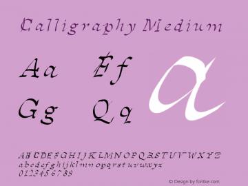 Calligraphy Medium Version 001.000 Font Sample