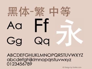 黑体-繁 中等 7.0d6e1 Font Sample