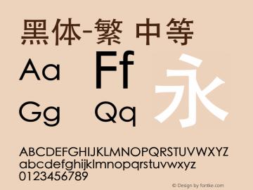 黑体-繁 中等 8.0d1e1 Font Sample