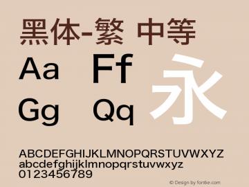 黑体-繁 中等 9.0d4e1 Font Sample