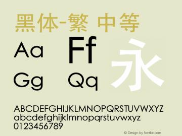 黑体-繁 中等 10.0d6e1 Font Sample