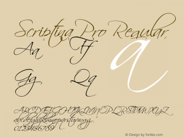 Scriptina Pro Regular Version 12.000 Font Sample
