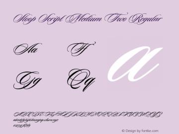 Sloop Script Medium Two Regular Macromedia Fontographer 4.1 16.05.2003图片样张