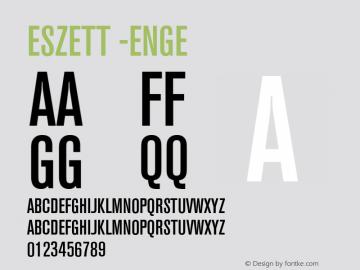 Eszett -Enge Version 1.001图片样张