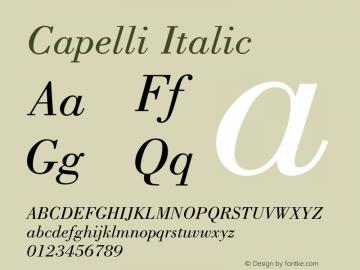 Capelli Italic Rev. 002.02q Font Sample