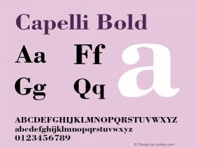 Capelli Bold Rev. 002.001 Font Sample