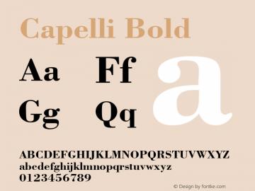 Capelli Bold Rev. 002.02q Font Sample
