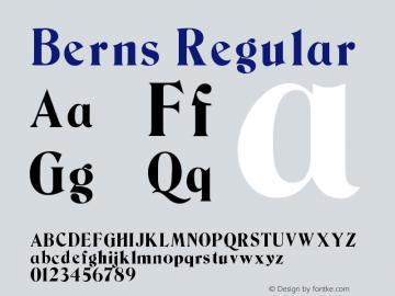 Berns Regular Version 0.0图片样张