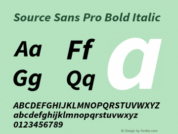 Source Sans Pro Bold Italic Version 1.040;PS 1.000;hotconv 1.0.70;makeotf.lib2.5.5900 Font Sample