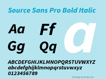 Source Sans Pro Bold Italic Version 1.040;PS Version 1.000;hotconv 1.0.70;makeotf.lib2.5.5900 Font Sample