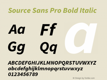 Source Sans Pro Bold Italic Version 1.075;PS 2.000;hotconv 1.0.86;makeotf.lib2.5.63406 Font Sample