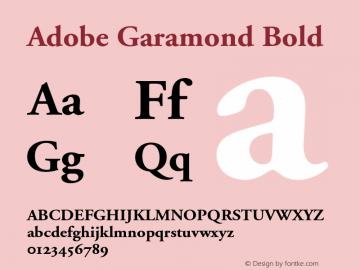 Adobe Garamond Bold 001.002 Font Sample