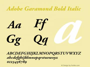 Adobe Garamond Bold Italic 001.002 Font Sample