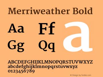 Merriweather Bold Version 1.003 Font Sample