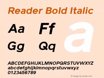 Reader Bold Italic Version 1.000图片样张